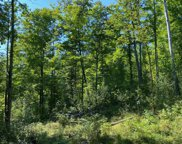 Menominee Trail Unit 10 acres, Gaylord image