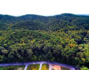 Tarklin Valley Rd, Knoxville image