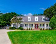 823 Mount Gilead Place Dr., Murrells Inlet image
