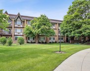 360 Claymoor Street Unit 3G, Hinsdale image