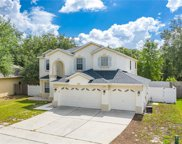 1326 Falconwood Court, Apopka image