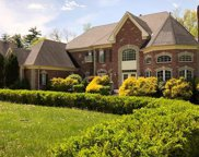 1315 Wildhorse Meadows  Drive, Chesterfield image