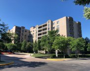 4545 W Touhy Avenue Unit #317, Lincolnwood image