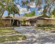 3460 Snowy Egret Court, Palm Harbor image