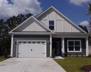 232 Heron Lake Ct., Murrells Inlet image