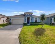 16488 Centipede Street, Clermont image
