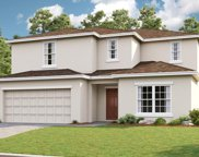 3895 Fescue Street, Clermont image
