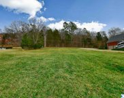 128 Williams And Broad Drive, Brownsboro image