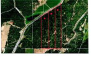 NNA  Parker Canyon Road 37.25 Acres, Bonners Ferry image