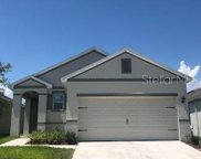 1734 Passion Vine Lane, Ocoee image