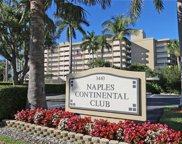 3443 Gulf Shore Blvd N Unit 314, Naples image