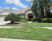 18806 Forest Glen Court, Tampa image