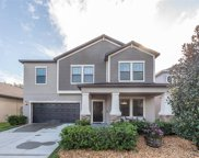 14248 Blue Dasher Drive, Riverview image