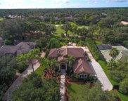 3325 Lakeview Oaks Drive, Longwood image