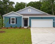285 Captiva Cove Loop, Pawleys Island image