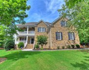 13203  Coyote Creek Court, Charlotte image