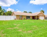 4526 Mohican Trail, Valrico image