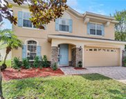 10528 Willow Ridge Loop, Orlando image