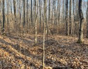Redpoll Trail Unit Parcel #7, 10 acres, Gaylord image