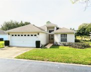 411 Juniper Way, Tavares image