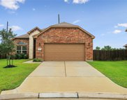 23003 Silver Linden Court, Tomball image