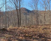 241 Fallen Oak Drive, Sylva image