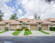 8043 Panther Trl Unit 1102, Naples image