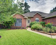 22534 Red Pine Drive, Tomball image