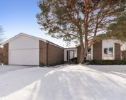 151 Arrowwood Drive, Northbrook image