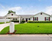 8718 Elmwood Lane, Tampa image