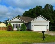 301 Pebble Island Lane, Jacksonville image
