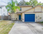 16811 Stanza Court, Tampa image
