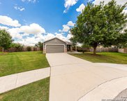 101 Willow Wood, Cibolo image