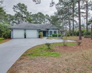 2 Flying King  Court, Hilton Head Island image