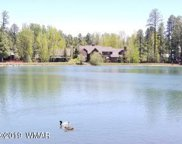 8161 White Oak Road, Pinetop image