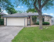 11604 Forest Pond, Live Oak image