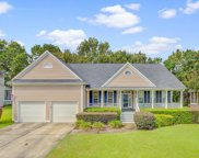 1329 Wynbrook Trace, Mount Pleasant image