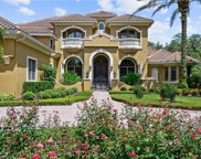 6025 Greatwater Drive, Windermere image