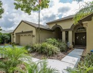 4891 Kylemore Court, Palm Harbor image