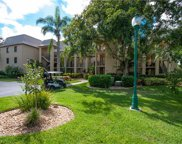 323 Bears Paw Trl Unit 323, Naples image
