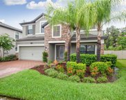 19554 Whispering Brook Drive, Tampa image