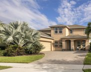 14573 Black Quill Drive, Winter Garden image