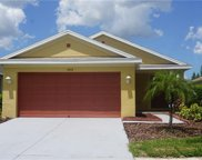 11512 Bay Gardens Loop, Riverview image