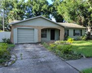 2702 W Ballast Point Boulevard, Tampa image