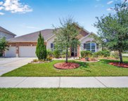 3335 Rosemary Trace Drive, Spring image
