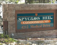 4212 Medical Dr Unit 1408, San Antonio image