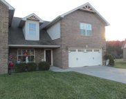 3007 Villas Creekside DR, Dandridge image