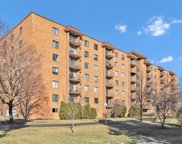 1717 W Crystal Lane Unit #707, Mount Prospect image