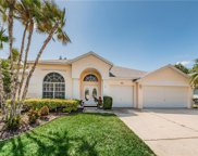 4754 Stoneview Circle, Oldsmar image
