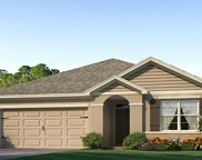 4928 Wedgeleaf Way, Palmetto image